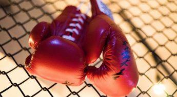 boxing-1921073_1920