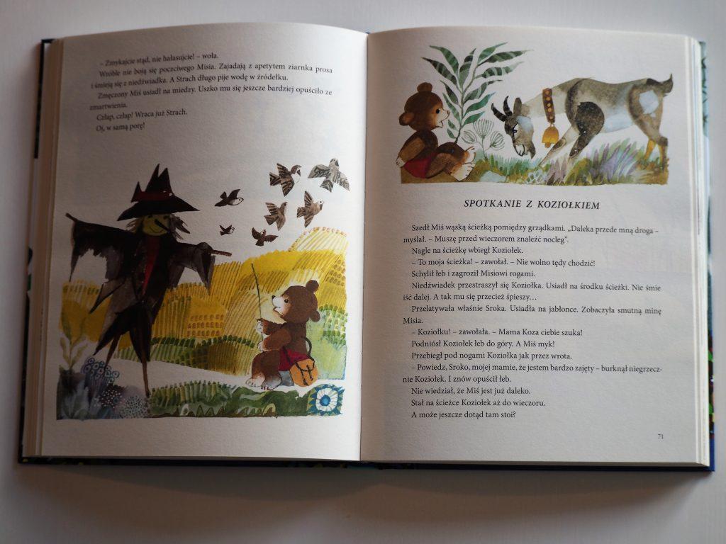 książki dla dzieci (11)