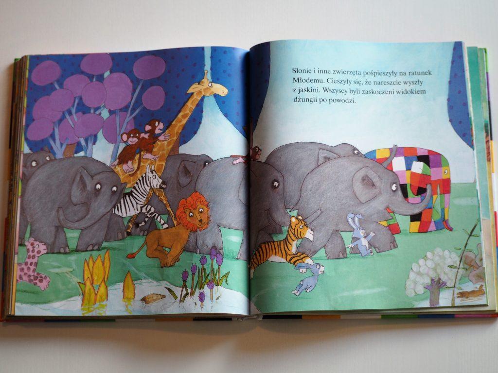 książki dla dzieci (13)