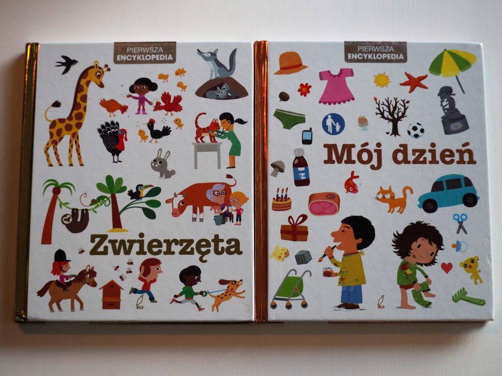 książki dla dzieci (23)